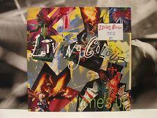 LIVING COLOUR  - TIME'S UP LP EX/EX HOLLAND 1990 EPIC 466920 1