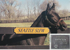 SEATTLE SLEW - THOROUGHBRED RACE HORSE POSTCARD - TRIPLE CROWN WINNER 1977