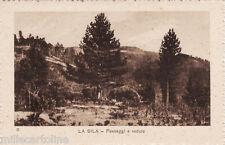 #LA SILA: PAESAGGI E VEDUTE n. II- edit. F. Gigliotti