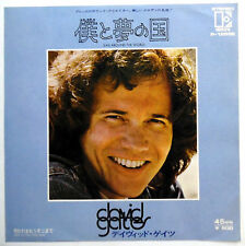 DAVID GATES 45 Sail Around The World / Help Is NEAR MINT Rock PROMO Japan e2974