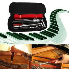 Professional 13Pcs Piano Tuning Maintenance Tuning Hammer Mute Tool Kit w/Case