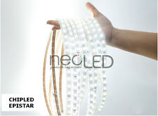 Striscia LED Strip luce fredda 6000k 5m 5050 300 LED Chip EPISTAR 6000 Lumen!