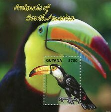 Guyana 2014 MNH Animals of South America 1v S/S I Birds Toco Toucan