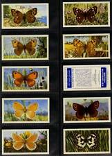 Full Set, Brooke Bond, British Butterflies 1963 (w16f086-339)