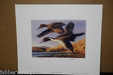 1991 New Mexico Duck Stamp Print & Governor's Wetlands Relief - First of State