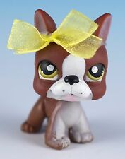 Littlest Pet Shop Boston Terrier #118 Brown and White w/Green Eyes