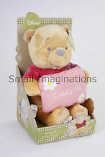 Disney Winnie the Pooh 25 cm Plush Soft Toy - Teddy with 'Cuddle Me' Pillow