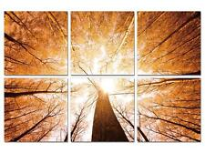 """47"""" FRAMED Large Modern Contemporary Canvas Wall Art Print Painting Autumn Trees"""