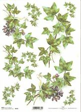 Rice Paper for Decoupage Scrapbooking Ivy Green Violet Flowers A4 ITD R970