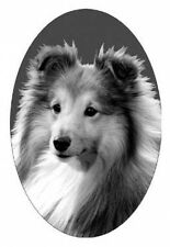 "4""X6 SHELTIE  static cling etched glass window decal for your home, auto, and RV"