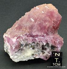 Top Cobaltcalcit Stufe AAA Cobaltoan Calcite Cobalt Mineral Specimen Marocco