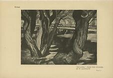 ANTIQUE PRUSSIAN ARTIST WALTER RUDOLF LEISTIKOW GERMAN WILLOW TREES OLD PRINT