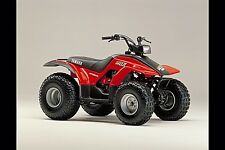 YAMAHA Breeze 125 YFA1 -  Grizzly125 YFM125 SERVICE , Owner's  & Parts Manual CD