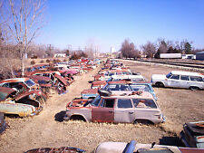 Vintage Studebaker salvage yard full of cars 8 x 10 Photograph