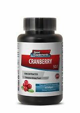 Bladder Health - Cranberry Extract 50:1 - Improves Dental Health Supplements  1B