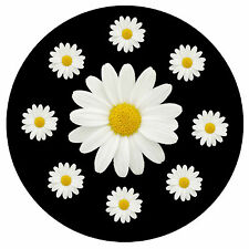 DAISIES - FUN CAR TAX DISC HOLDER - BRAND NEW - REUSABLE - GIFT