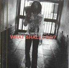 CD Single Terence TRENT D'ARBY What shall I do ? Promo 1-track CARD SLEEVE NEW