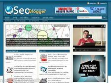 Hot SEO / Search Engine Optimization Marketing WP Blog Website For Sale!