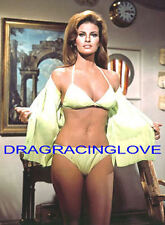 "Gorgeous Actress/Sex Symbol ""Raquel Welch"" ""Pin Up"" PHOTO! #(7d)"