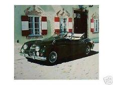 Altes Blechschild Oldtimer Jaguar PKW Cabrio Speichen_Räder gebraucht  used
