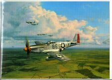 WW2 - American Eagles - P-51 Mustangs du 357° Fighter Group - Allemagne Oct 1944