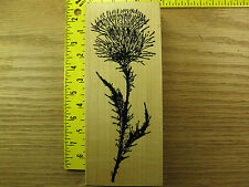 Rubber Stamp BIG Thistle by Fred Mullett Flower Plant  Stampinsisters #3218