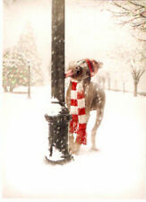 Weimaraner Merwwy Chwithmuth Christmas Cards Box of 14