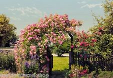 Fototapete Wandbild Komar Rose Garden 8-936 Rosen Blumen Gartentor 368 x 254 cm