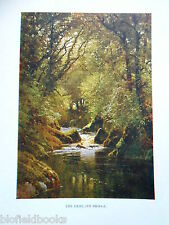 Devon 1925 Antiquarian Print by Sutton Palmer of The Erme, Ivy Bridge