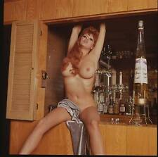 Roxanne Brewer Rare vintage nude pinup original 2 1/4 color transparency