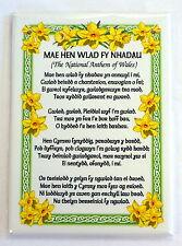 Welsh National Anthem / Daffodils border design FRIDGE MAGNET,  Wales / Cymru