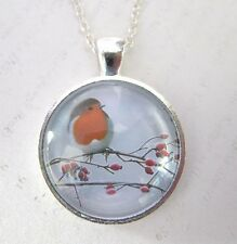 Winter Robin on a Branch Silver Pendant Glass Necklace New in Gift Bag