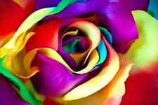 Murales nature fleur rose grand repositionable Vinyle Décoration Intérieure Art