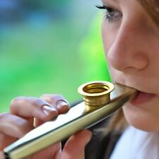 Charming Gold Kazoo Classic Musical Instrument Playing Fun For Children Adults