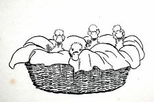 Cecil Aldin Print 1912 FOUR BABY DUCKS DUCKLINGS in BASKET Matted Illustration