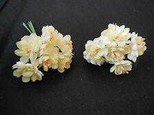 6 mini Champagne Camellia With Wire Stems For Card Craft Cake 4.2cm/flower