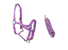 HORSE (  COB ) PINK AND PURPLE HEAD COLLAR & MATCHING LEAD ROPE SET