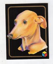 figurina card - AMICI DEL CUORE  - numero 203 P. LEVRIERO ITA