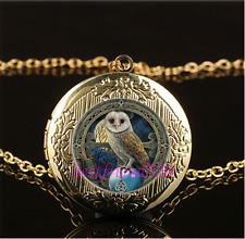 Wicca Owl Photo Cabochon Glass Gold Plating Chain Locket Pendant Necklace