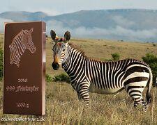 1 kg Kupferbarren Zebra Kilobarren Feinkupfer 999 Fine Copper Bar + Zertifikat