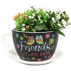 Inspirational Friends Ceramic Flower Herb Cup & Saucer Pot Plant Planter - 13cm