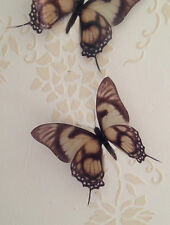 "Four 5"" Cream Brown 3D Butterflies Butterfly Decal Bedroom Mirror Accessories"