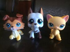 LPS Littlest Pet Shop Lot Of 3 RARE Popular Pets  # 577 # 58 # 339