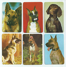#600.033 Blank Back Swap Cards -MINT- Lot of 6 - Photos of big dogs