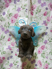 NEW WESTLAND DOG CHOCOLATE LABRADOR RETRIEVER RESIN FAIRY ORNAMENT