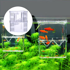 Pet Aquarium Fish Tank Guppy Double Breeding Breeder Rearing Trap Box incubator
