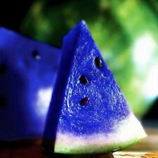 10PCS Blue Watermelon Seeds Organic House Plants NON-GMO Edible Garden Fruits