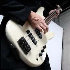 D018  LEARN HOW TO  PLAY BASS GUITAR  BEGINNERS GUIDE DVD UNBRANDED