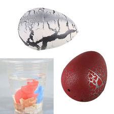 Hatching Growing Dinosaur Add Water Grow Dino Egg Cute Children Kid Toys Gift M