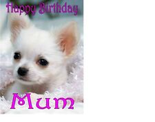 "CHIHUAHUA CAKE TOPPER Personalised A4 Icing Sheet 10""x8"""